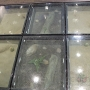 scorpionpit glassflooring through